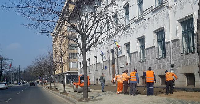 """Timișoara, șantierele și """"sărmanul"""" Covid 19"""